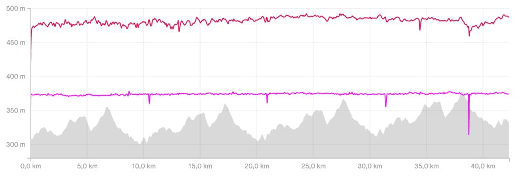 Marathon Auswertung - Herzfrequenz, Puls, Schrittfrequenz, Höhenprofil